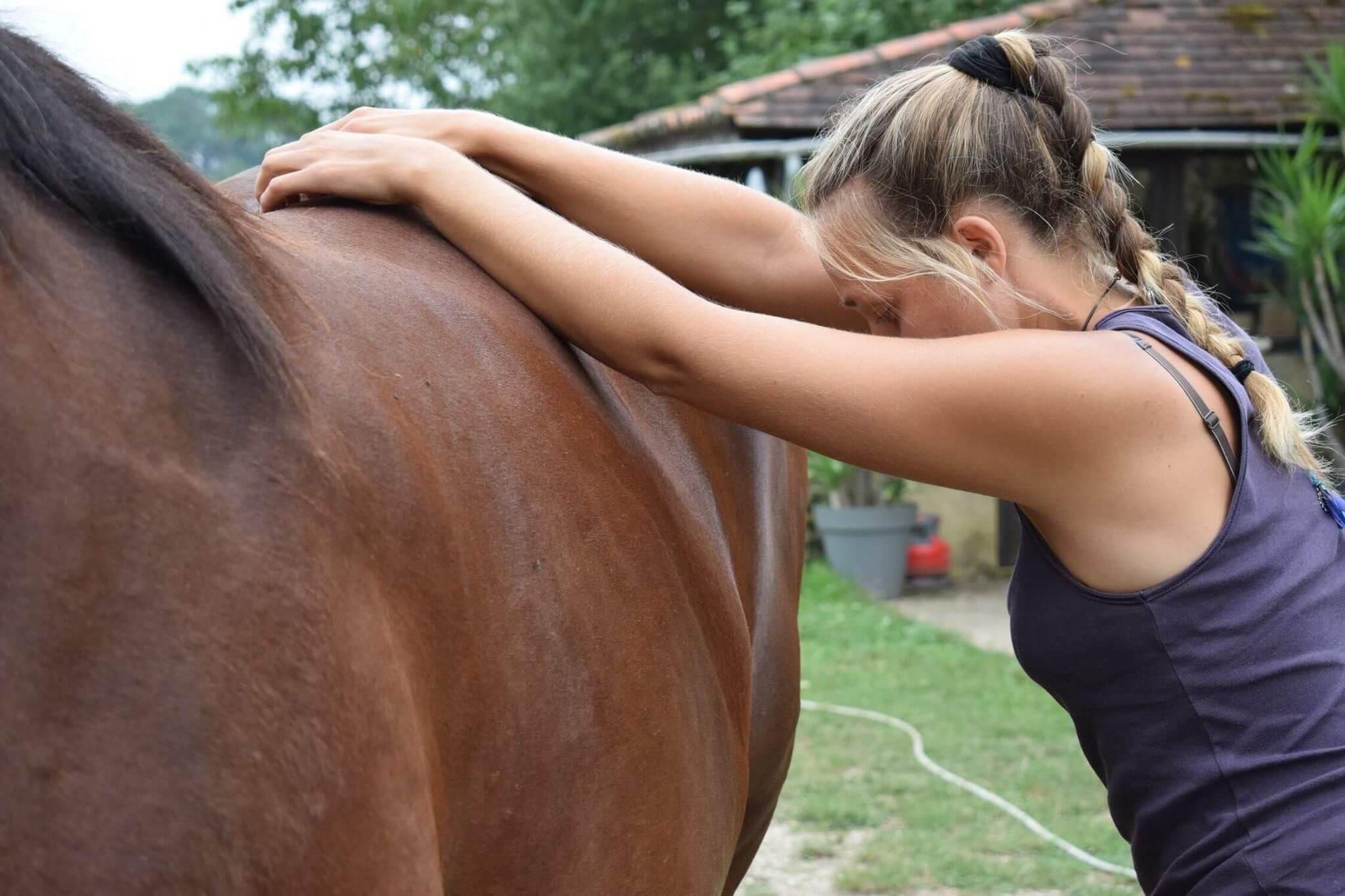 stage yoga et cheval