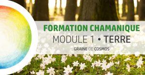 Formation Chamanique - cycle Tilleul M1 - avec Graine de Cosmos