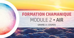 Formation Chamanique - cycle Magnolia M2 - avec Graine de Cosmos