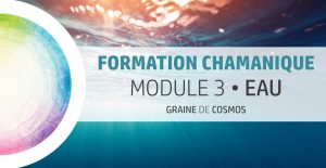 Formation Chamanique - cycle Magnolia M3 - avec Graine de Cosmos