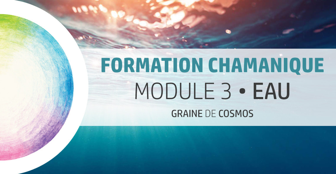 formation Chamanique cycle 3