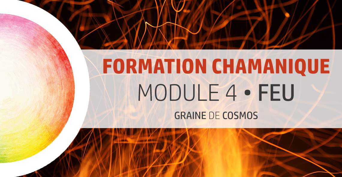 formation Chamanique cycle 4
