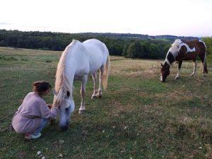 Séjour thérapie, méditation et bien-être pour le cheval avec Terre Celeste & Caval & Go